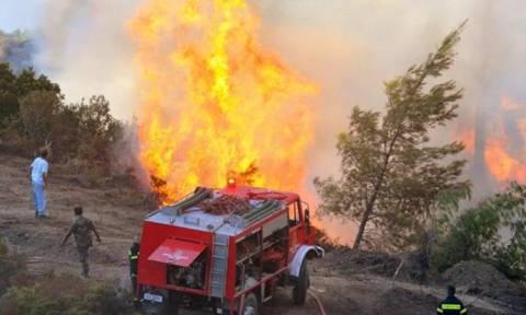 Πυρκαγιά και στην Ερμιονίδα