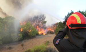 Πυρκαγιά μαίνεται στο Κορωπί