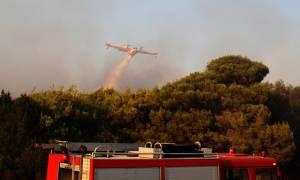Οριοθετήθηκε η πυρκαγιά στο Αυλάκι - Συνεχίζει το καταστροφικό της έργο αυτή στην Ερμιονίδα