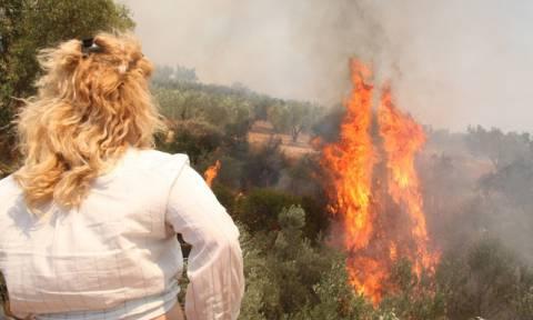Απαγορεύτηκε η κυκλοφορία στα δάση της Αργολίδας για προληπτικούς λόγους