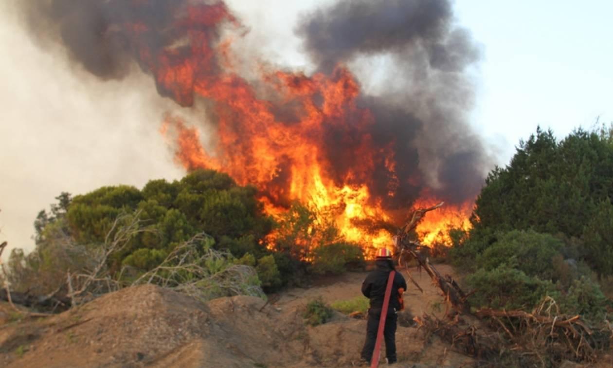 Πυρκαγιές: Καλύτερη η εικόνα σε Ερμιονίδα, Κυλλήνη και Αυλάκι