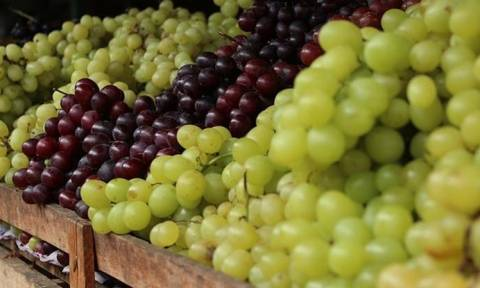 Νέες προοπτικές  από το άνοιγμα των εξαγωγών φρούτων στην Κίνα