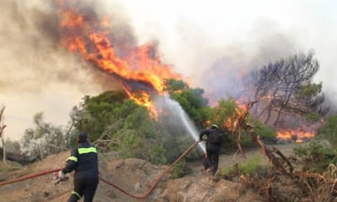 Πυρκαγιές - Πύρινη κόλαση σε Ρόδο, Εύβοια και Ηλεία