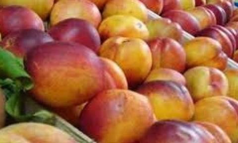 Δεσμεύτηκαν 8 τόνοι φρούτων χωρίς σήμανση