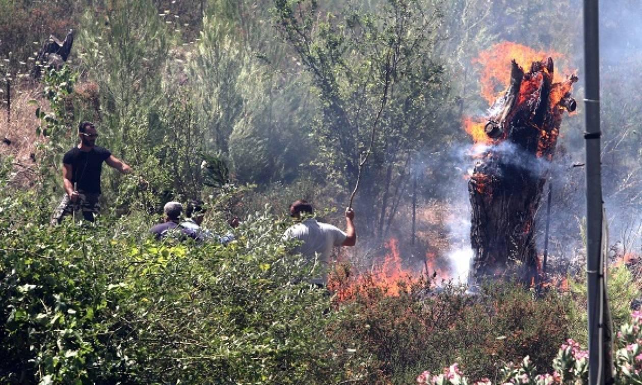 Φωτιές: Τα Βάτικα ξυπνούν ενώ θρηνούν...