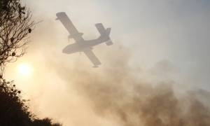 Αρνούνται τις κατηγορίες οι συλληφθέντες για τη φωτιά στην Εύβοια (video)
