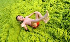 Και η θάλασσα έγινε πράσινη ... στην Κίνα (photos)