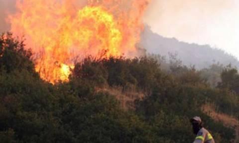 Μεγάλη πυρκαγιά στα Κάτω Δολιανά Αρκαδίας