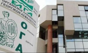 ΟΓΑ: Τη Δευτέρα η καταβολή των συντάξεων Αυγούστου