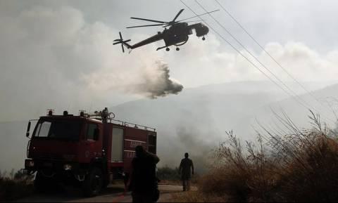 Μάχη με τις φλόγες στο Μαρκόπουλο - Η φωτιά κατακαίει χαμηλή έκταση