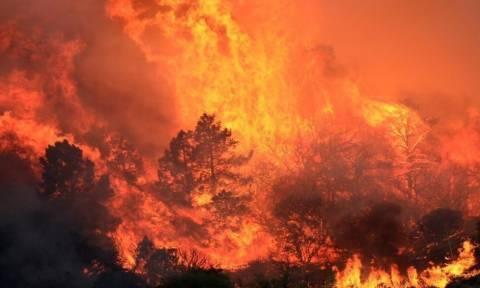 Στο έλεος της πυρκαγιάς η Καλιφόρνια – Ένας πυροσβέστης νεκρός