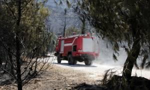 Στο «κόκκινο» ο κίνδυνος πυρκαγιάς σε Αττική και Εύβοια