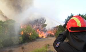 Οριοθετήθηκε η φωτιά στο Κερατσίνι (photos)