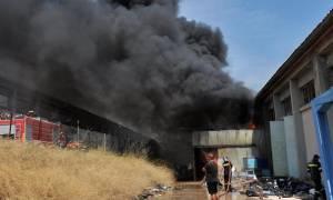 Υπό έλεγχο η φωτιά στο Κιάτο