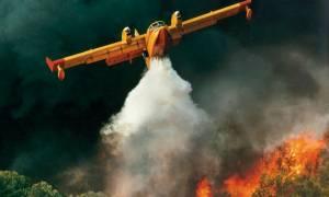 Συναγερμός! Δυο πυρκαγιές στην Ηλεία