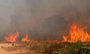 Υπό έλεγχο οι τρεις πυρκαγιές στην Αιτωλοακαρνανία