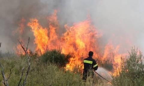 Ηράκλειο: Υπό έλεγχο η πυρκαγιά ανάμεσα στα χωριά Αποστόλους και Σμάρι