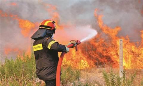 Πρέβεζα: Πυρκαγιά στα διόδια του Ακτίου - Απειλούνται κατοικίες