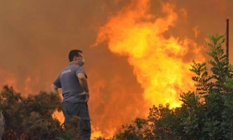 Υπό έλεγχο η φωτιά στο Πευκοχώρι Χαλκιδικής