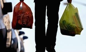 Ο ιδανικός τρόπος για να μεταφέρετε τα ψώνια του σούπερ μάρκετ είναι... τετράποδος! (video)