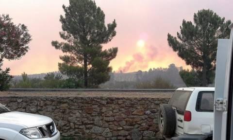 Ισπανία: Σχεδόν 1.000 πολίτες απομακρύνθηκαν από τα σπίτια τους λόγω μεγάλης φωτιάς