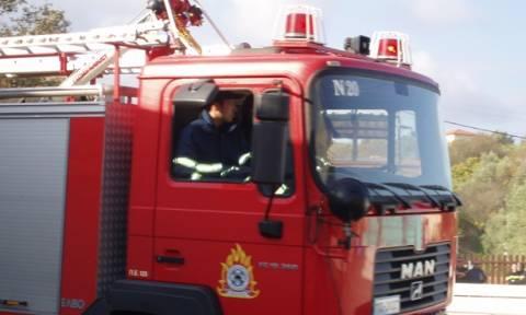 Σε πλήρη έλεγχο όλα τα μέτωπα της φωτιάς στις περιοχές της ανατολικής Μακεδονίας