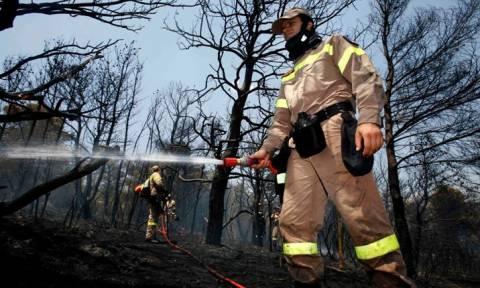 Σε ύφεση η πυρκαγιά στους Θρακομακεδόνες