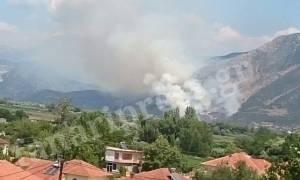 «Συναγερμός» στην Πυροσβεστική - Πυρκαγιά στην Πάργα (photos)