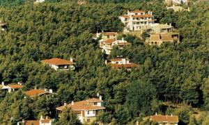 Απόφαση του ΣτΕ για κατεδάφιση αυθαίρετων κτισμάτων εντός δημόσιας δασικής έκτασης