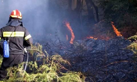 «Βλέπουν» εμπρησμό πίσω από την πυρκαγιά στη Βαρυμπόμπη