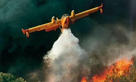 Πάτρα: Σε ύφεση η πυρκαγιά στο Γιαννισκάρι