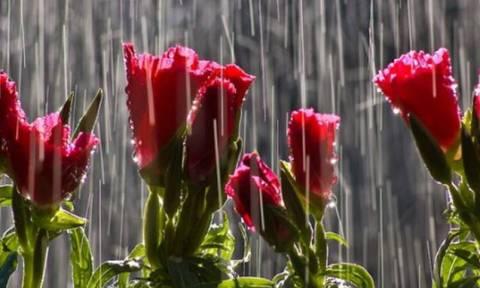 Καιρός: Βροχερό το σκηνικό και τον Δεκαπενταύγουστο