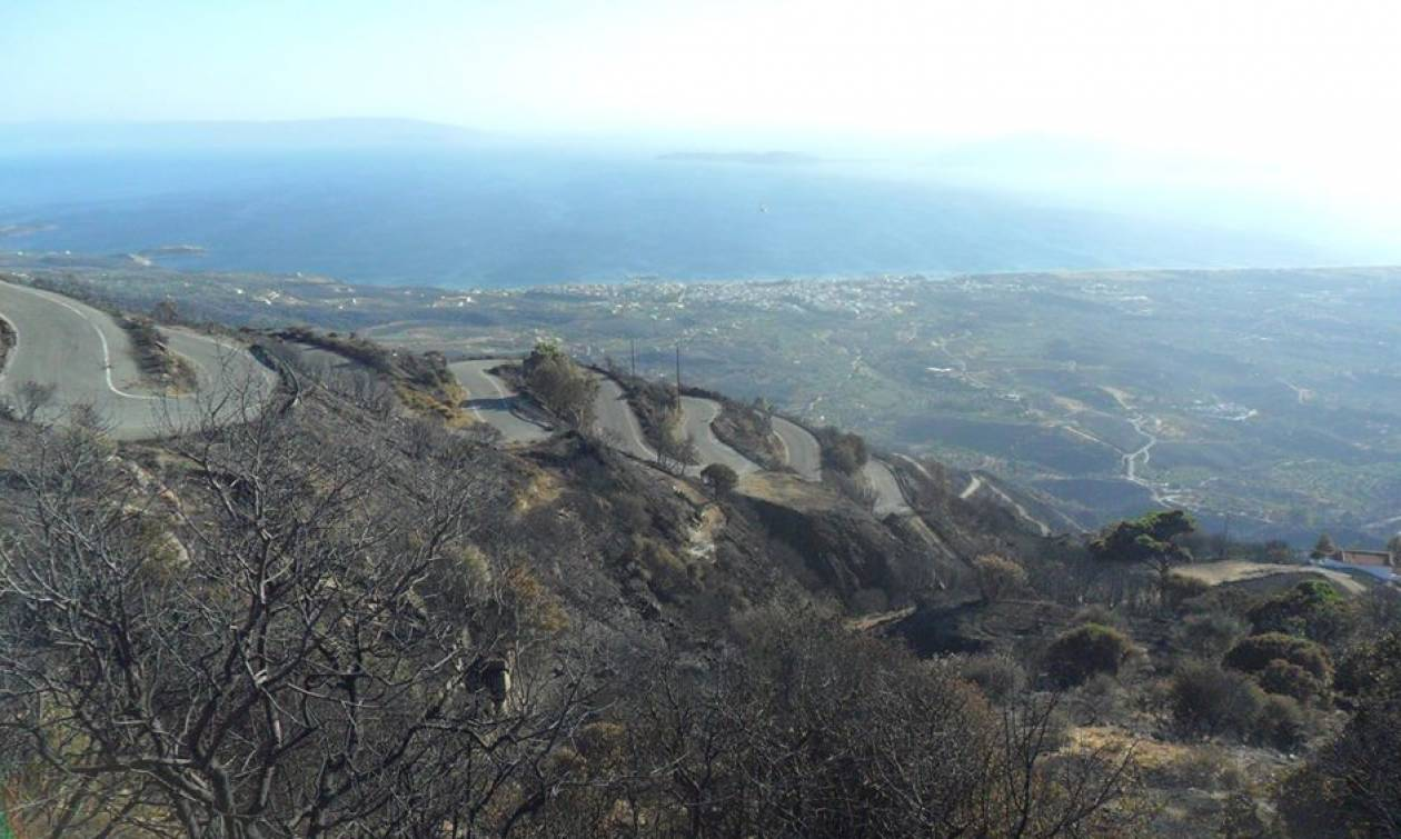 Συγκλονιστικές μαρτυρίες από τη φωτιά στη Νεάπολη - Άγιος Νικόλαος: «Η ζωή από την αρχή»