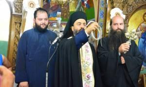 Εμφανίστηκαν και φέτος τα φιδάκια της Παναγίας στην Κεφαλονιά (photos&video)