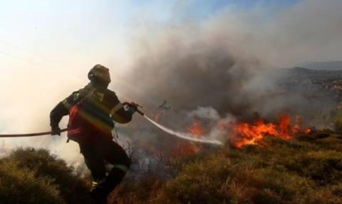 Ρόδος: Υπό έλεγχο τέθηκε η μεγάλη πυρκαγιά (photos&video)