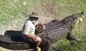 Γνωρίστε το γητευτή κροκοδείλων που δεν διστάζει να τους… ιππεύσει! (video)