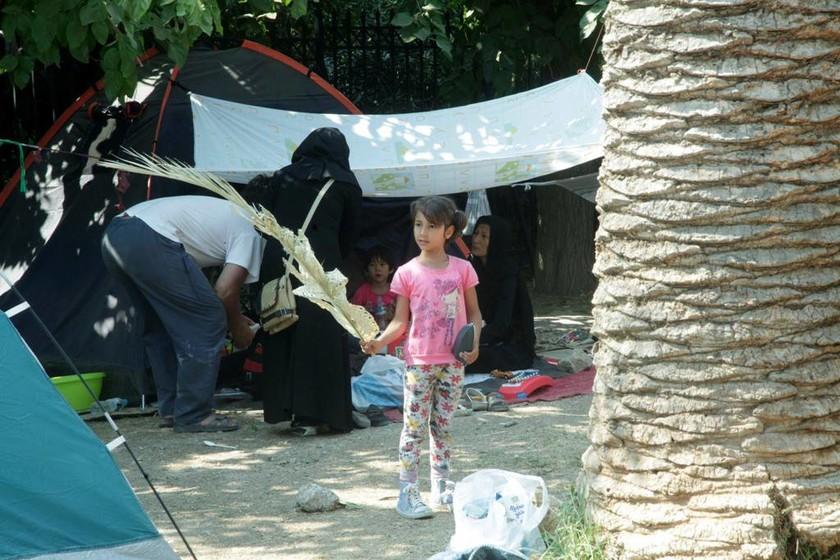 Σε εξέλιξη η μεταφορά των προσφύγων στον Ελαιώνα (photos)