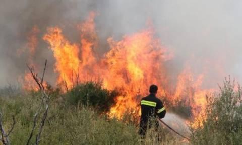 Υπό έλεγχο τέθηκαν φωτιές που εκδηλώθηκαν σε Αμόνι Κορινθίας και Ανάληψη Αμαλιάδας