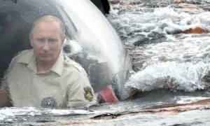 Ο Πούτιν, η κατάδυση, το βυζαντινό ναυάγιο και η ελληνική παρουσία στην Κριμαία (photos & video)