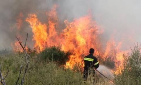 Νύχτα αγωνίας στο Ξυλόκαστρο: Συνεχίζει να καίει η φωτιά - Εκκενώθηκε μαθητική κατασκήνωση