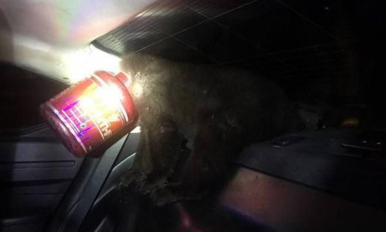 Αστυνομικοί διέσωσαν αρκουδάκι το κεφάλι του οποίου είχε σφηνώσει σε... δοχείο! (photos)