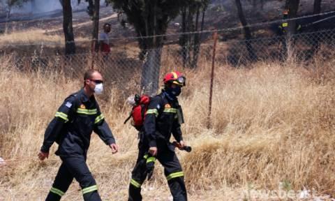 Ξυλόκαστρο: Δύο συλλήψεις για την μεγάλη πυρκαγιά (vid)