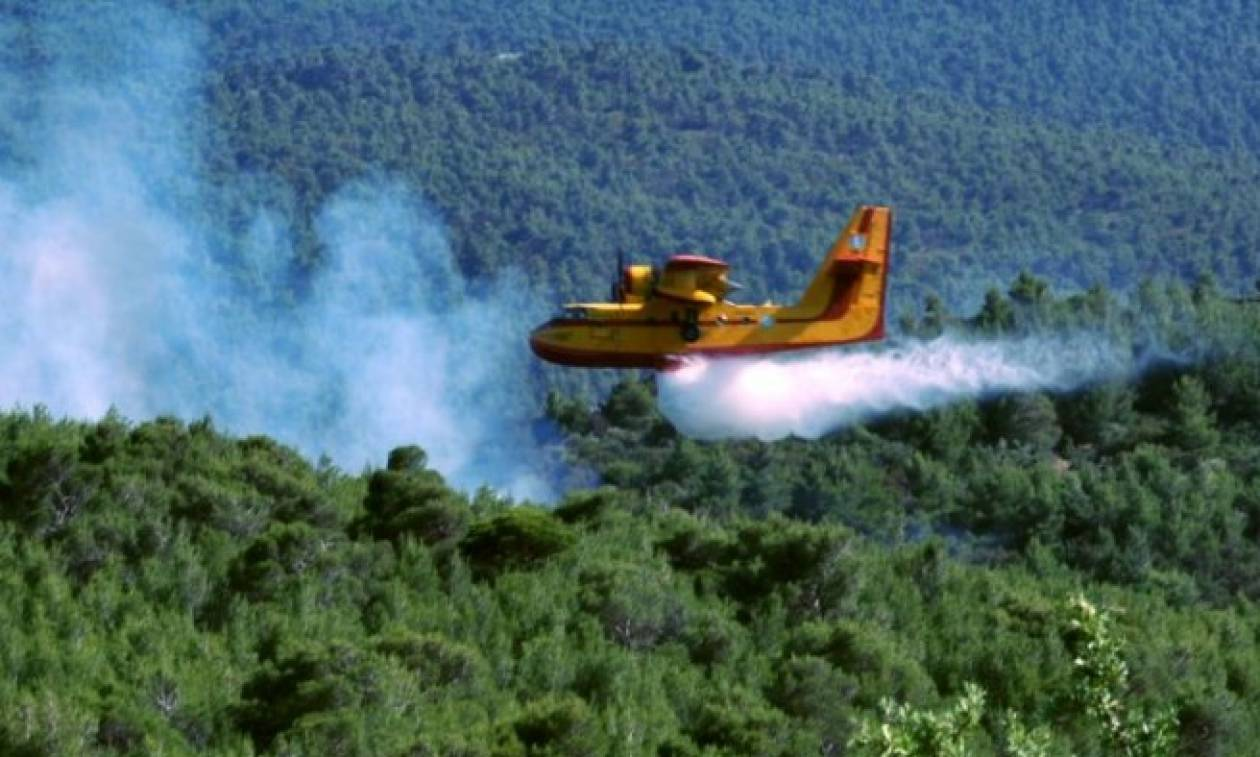 Κέρκυρα: Υπό πλήρη έλεγχο η πυρκαγιά που στη Στρινύλα