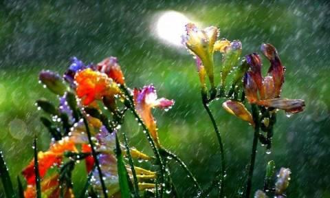 Καιρός: Βροχές, καταιγίδες και χαλάζι το Σαββατοκύριακο