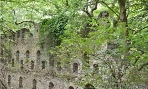 Τιμήθηκε η Παναγία στα ερείπια της Μονής Φανερωμένης
