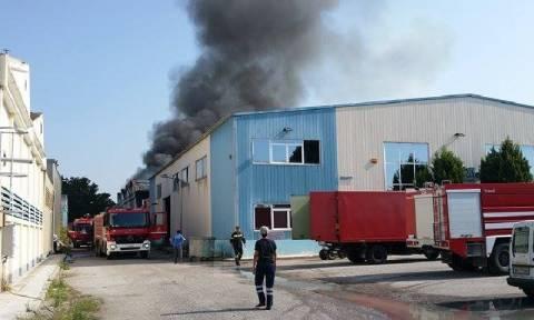 Θεσσαλονίκη: Φωτιά σε εργοστάσιο χρωμάτων (photos)