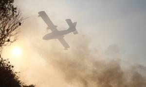 Κεφαλονιά: Σε εξέλιξη δύο πυρκαγιές το μεσημέρι της Πέμπτης (27/8)