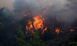 Ξάνθη: Πυρκαγιά στα Αρχαία Άβδηρα