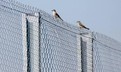 Ένα φράχτη μήκους 110 χλμ. στα σύνορά με τη Ρωσία σχεδιάζει η κυβέρνηση της Εσθονίας