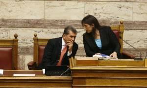 Εκλογές 2015 - Μητρόπουλος: Συνέντευξη Τύπου στη Βουλή, παρουσία της Κωνσταντοπούλου